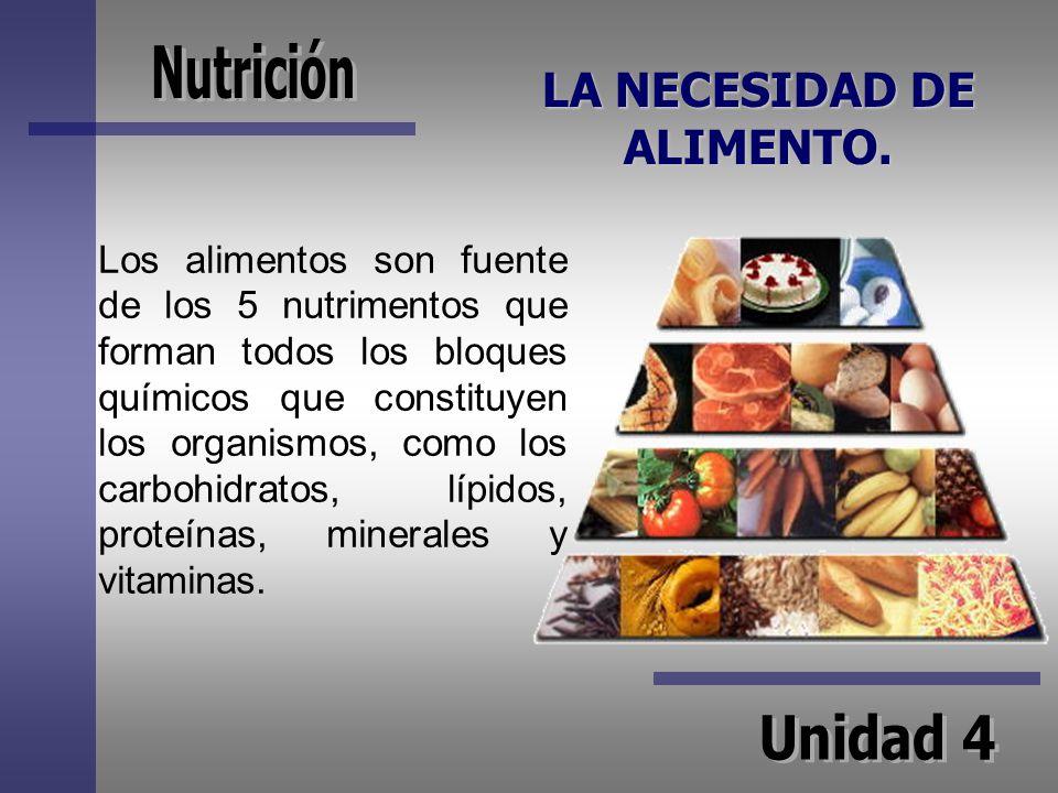 LA NECESIDAD DE ALIMENTO. Los alimentos son fuente de los 5 nutrimentos que forman todos los bloques químicos que constituyen los organismos, como los
