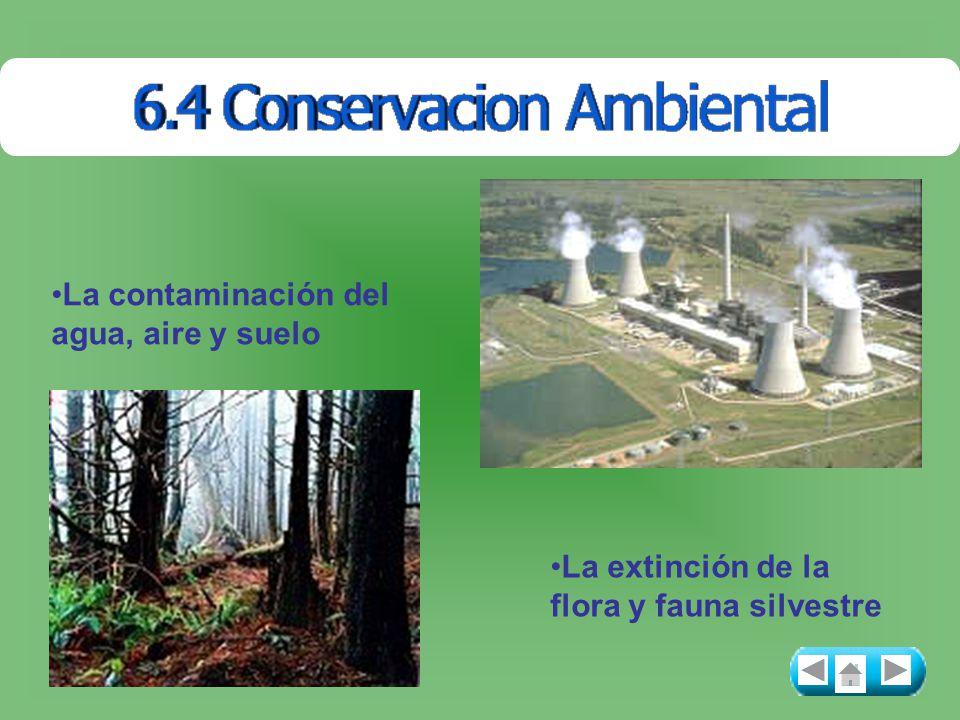 La contaminación del agua, aire y suelo La extinción de la flora y fauna silvestre