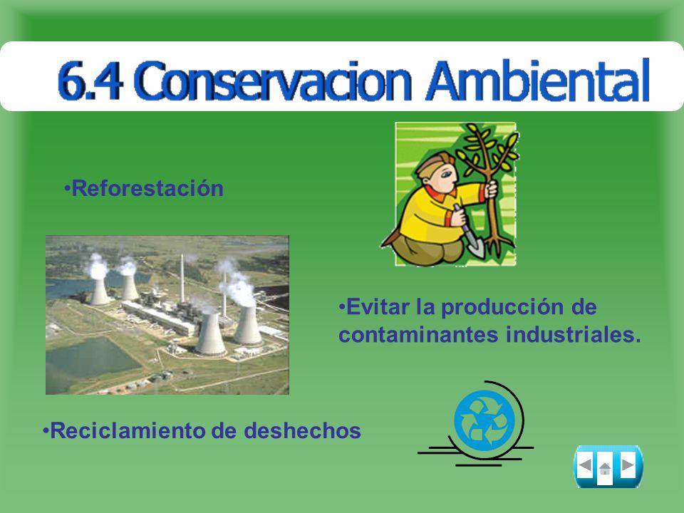 Reforestación Evitar la producción de contaminantes industriales. Reciclamiento de deshechos