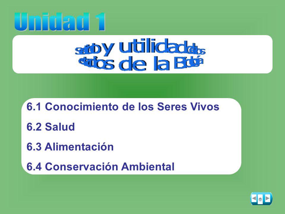 6.1 Conocimiento de los Seres Vivos 6.2 Salud 6.3 Alimentación 6.4 Conservación Ambiental