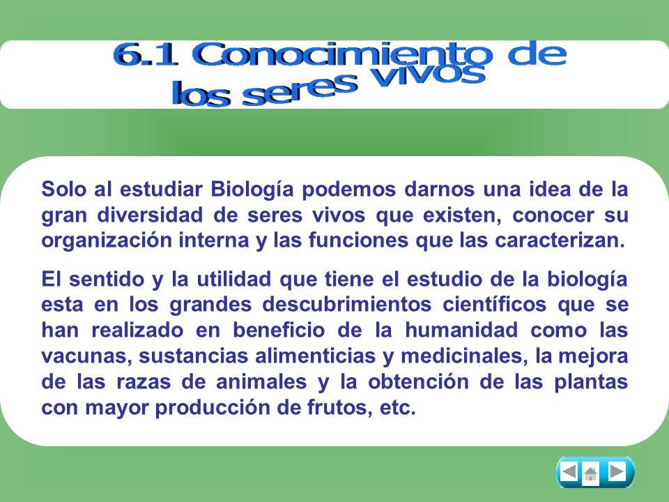 Solo al estudiar Biología podemos darnos una idea de la gran diversidad de seres vivos que existen, conocer su organización interna y las funciones qu
