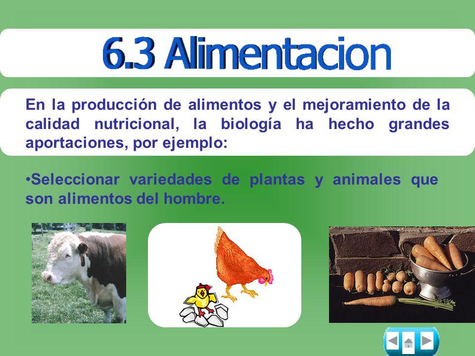 En la producción de alimentos y el mejoramiento de la calidad nutricional, la biología ha hecho grandes aportaciones, por ejemplo: Seleccionar varieda