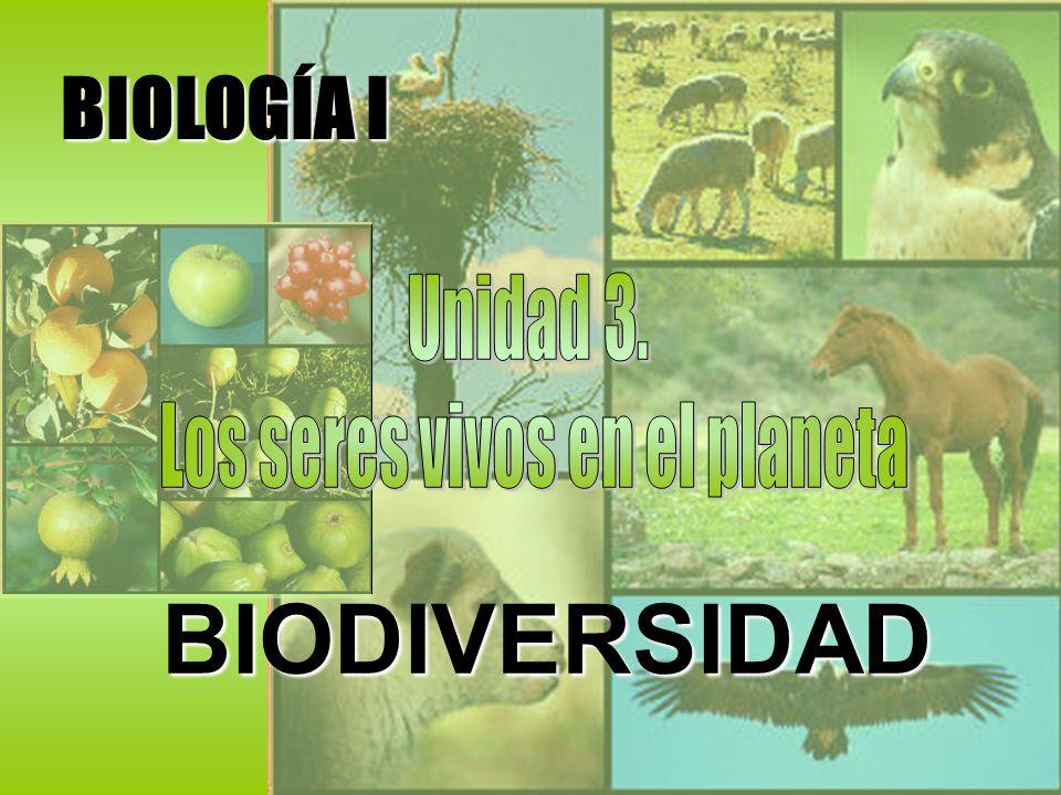 BIOLOGÍA I BIODIVERSIDAD