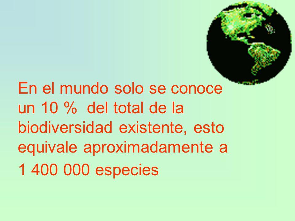 En el mundo solo se conoce un 10 % del total de la biodiversidad existente, esto equivale aproximadamente a 1 400 000 especies