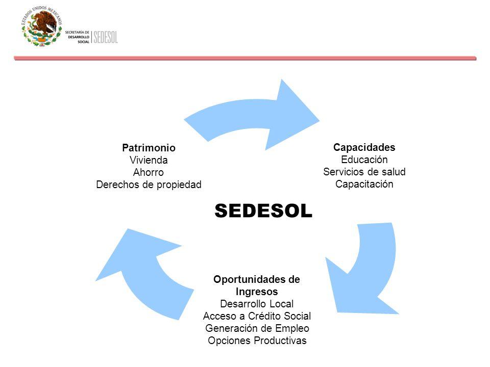 Capacidades Educación Servicios de salud Capacitación Oportunidades de Ingresos Desarrollo Local Acceso a Crédito Social Generación de Empleo Opciones