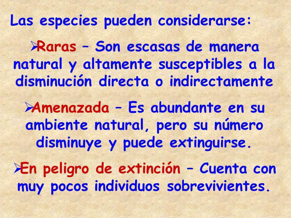 Esc.Sec. Téc. No. 70 Profesor Refugio Ramírez Mata Clave: 28DST0070J Cd.