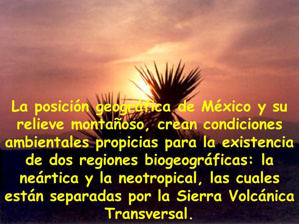 La posición geográfica de México y su relieve montañoso, crean condiciones ambientales propicias para la existencia de dos regiones biogeográficas: la neártica y la neotropical, las cuales están separadas por la Sierra Volcánica Transversal.