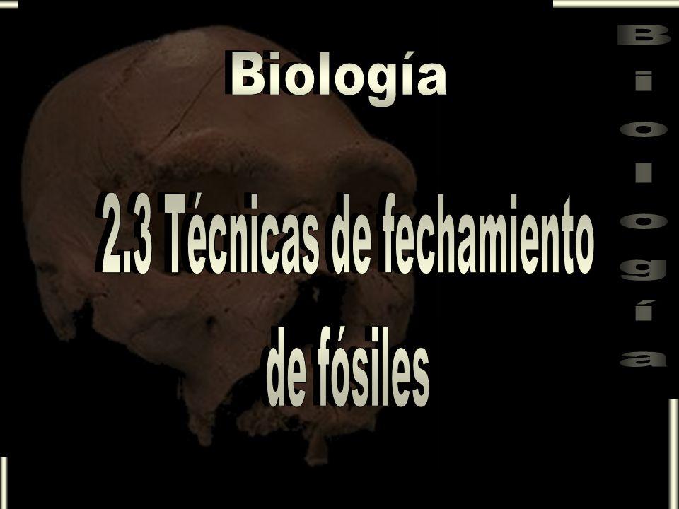 Para saber la edad de los fósiles se utilizan diferentes procedimientos, la mayoría de ellos están basados en las propiedades radiactivas de ciertos elementos como: · Uranio 238 · Carbono 14 · Potasio 40 · Cloro 36 · Torio 230 · Uranio 238 · Carbono 14 · Potasio 40 · Cloro 36 · Torio 230