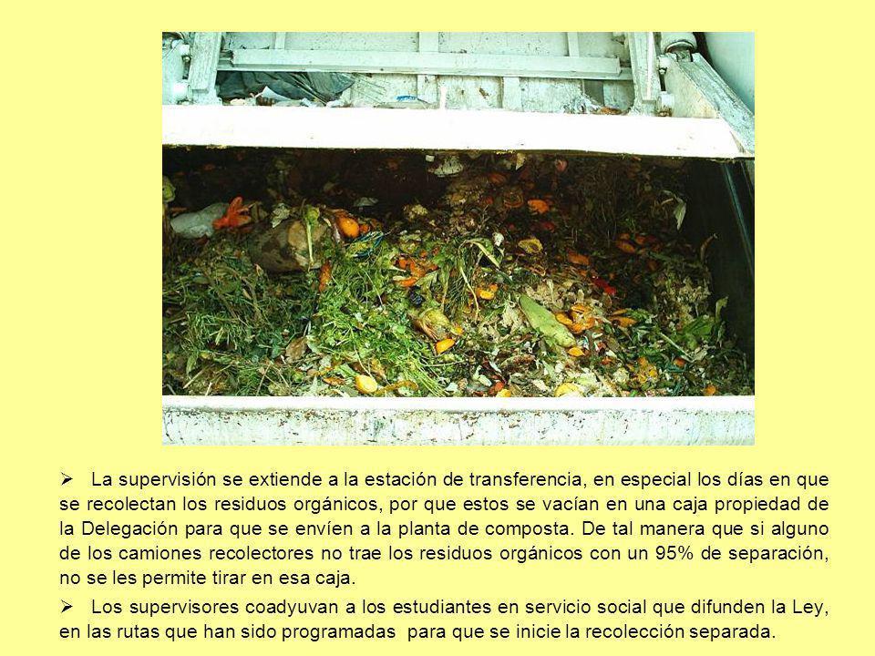 La supervisión se extiende a la estación de transferencia, en especial los días en que se recolectan los residuos orgánicos, por que estos se vacían e