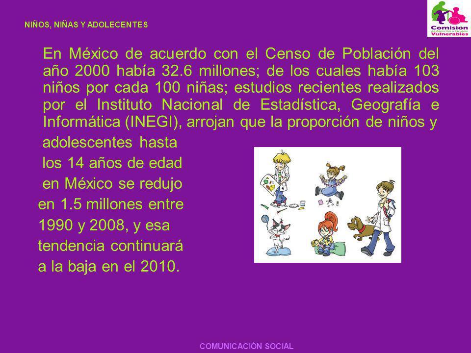 En el Informe Anual de la UNICEF 2007 realizado por Susana Sottoli, Representante de la UNICEF en México se proporcionan los siguientes datos con respecto a la niñez en nuestro país.