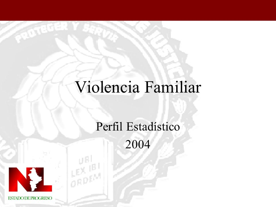 Violencia Familiar Perfil Estadístico 2004