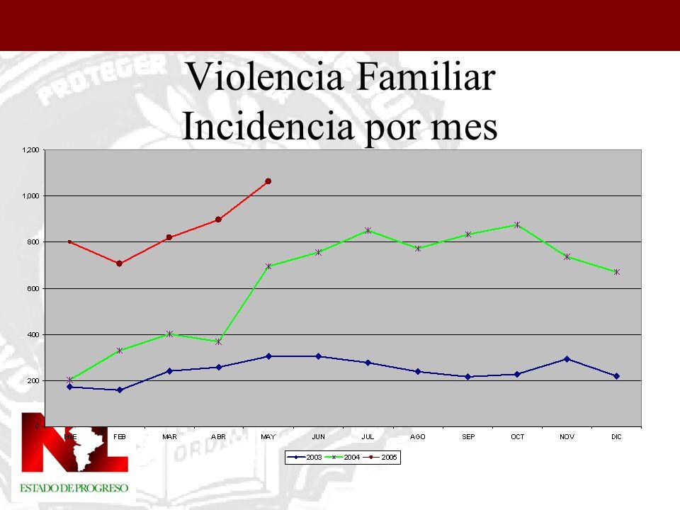 Violencia Familiar Colonias de Santa Catarina