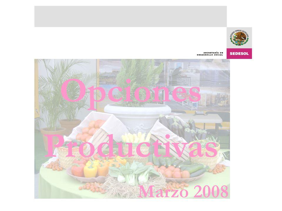 Opciones Productivas Marzo 2008