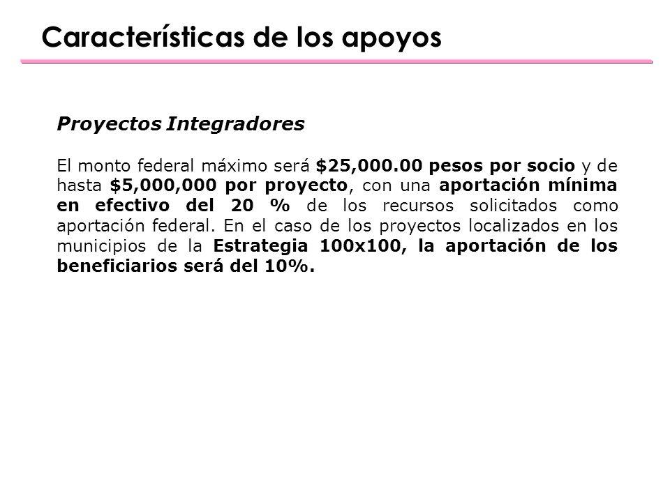 Características de los apoyos Proyectos Integradores El monto federal máximo será $25,000.00 pesos por socio y de hasta $5,000,000 por proyecto, con una aportación mínima en efectivo del 20 % de los recursos solicitados como aportación federal.
