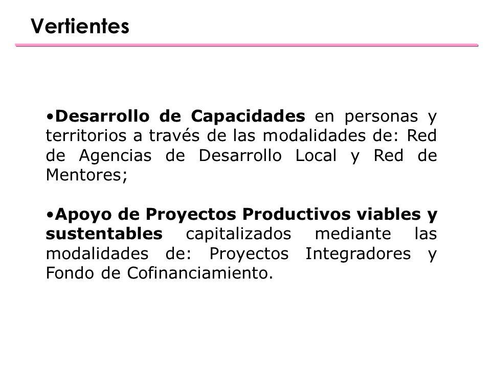 Desarrollo de Capacidades en personas y territorios a través de las modalidades de: Red de Agencias de Desarrollo Local y Red de Mentores; Apoyo de Proyectos Productivos viables y sustentables capitalizados mediante las modalidades de: Proyectos Integradores y Fondo de Cofinanciamiento.