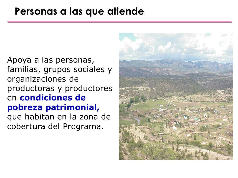 Contactos Opciones Productivas Av.Paseo de la Reforma No.