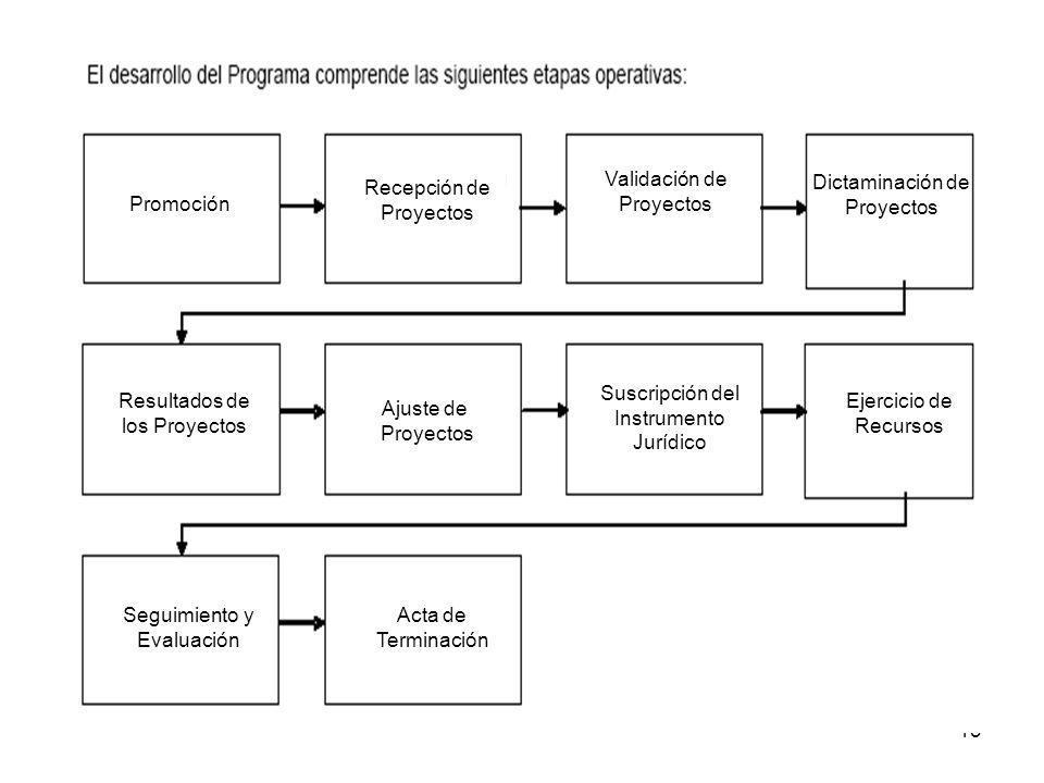 13 Dictaminación de Proyectos Resultados de los Proyectos Ajuste de Proyectos Suscripción del Instrumento Jurídico Ejercicio de Recursos Seguimiento y Evaluación Acta de Terminación Promoción Recepción de Proyectos Validación de Proyectos