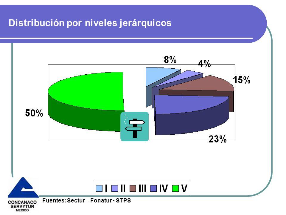 Distribución por niveles jerárquicos Fuentes: Sectur – Fonatur - STPS
