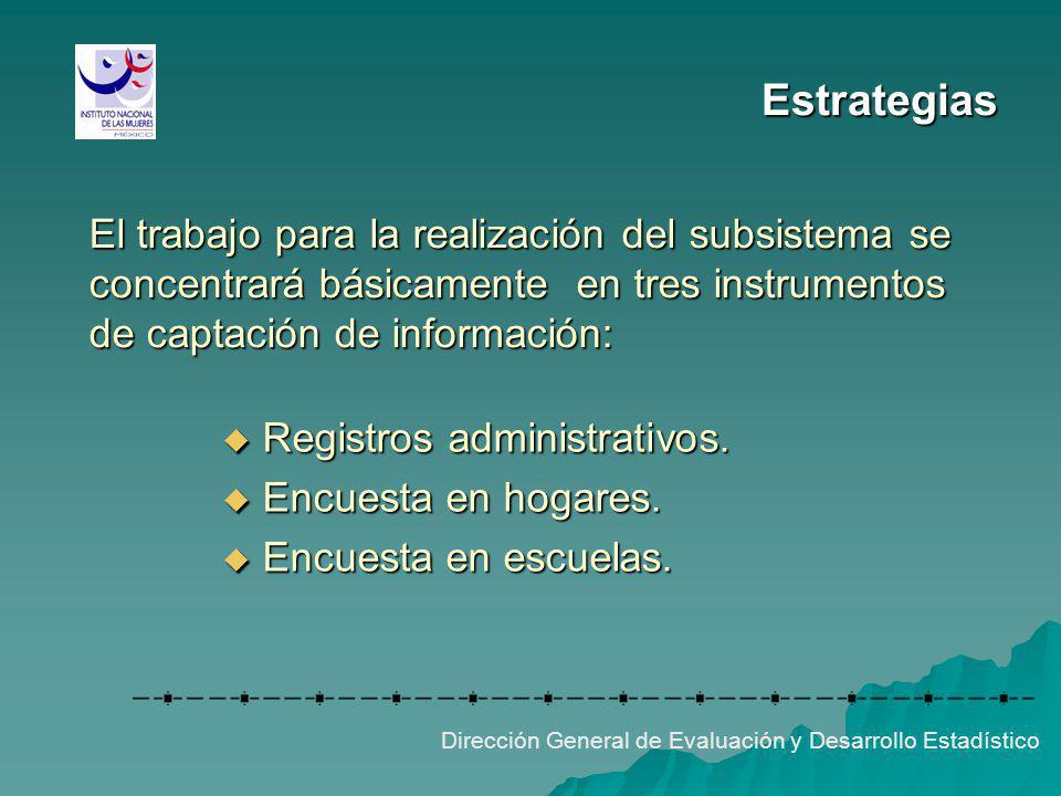 Estrategias El trabajo para la realización del subsistema se concentrará básicamente en tres instrumentos de captación de información: Dirección Gener