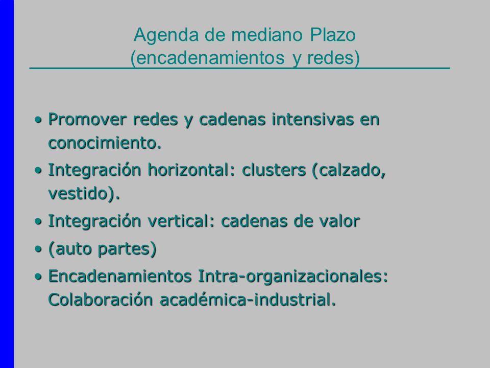 Agenda de mediano Plazo (encadenamientos y redes) Promover redes y cadenas intensivas en conocimiento.Promover redes y cadenas intensivas en conocimie
