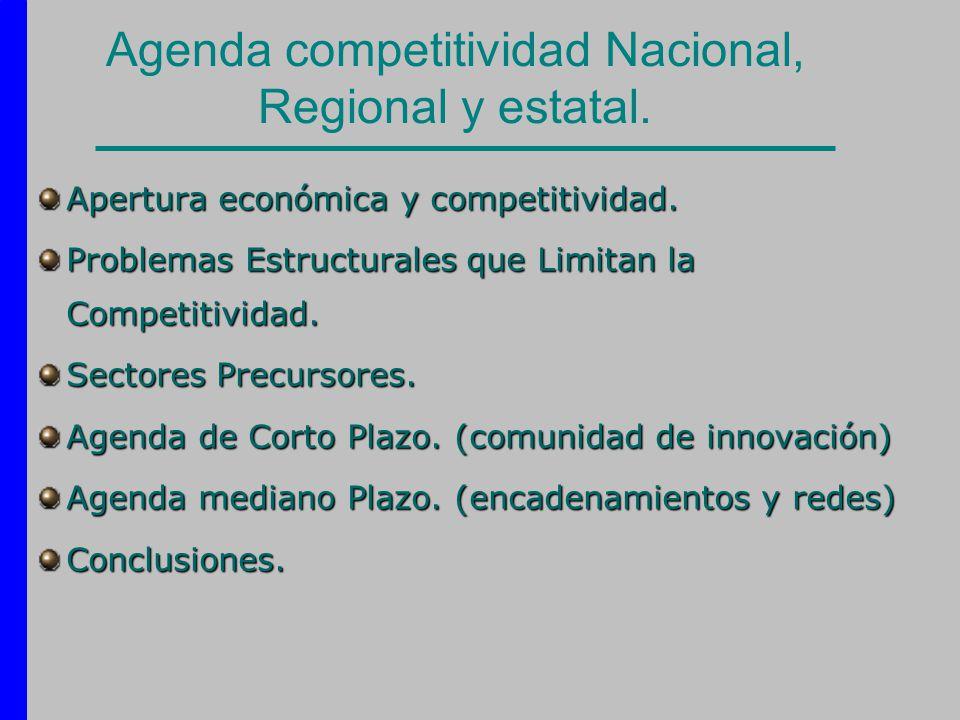 Agenda competitividad Nacional, Regional y estatal. Apertura económica y competitividad. Problemas Estructurales que Limitan la Competitividad. Sector
