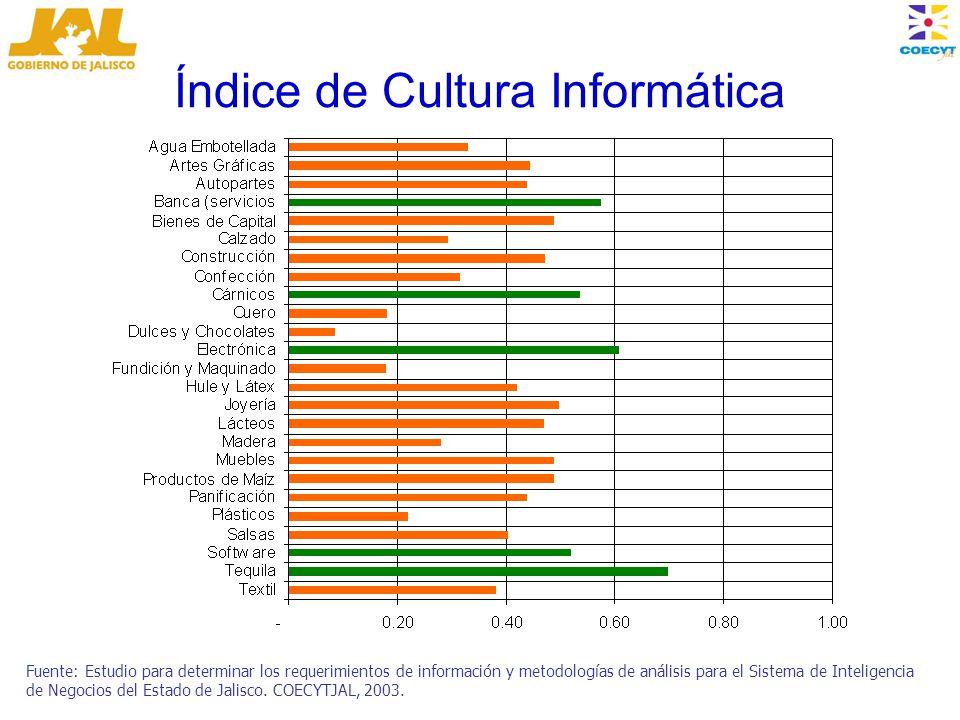 Índice de Cultura Informática Fuente: Estudio para determinar los requerimientos de información y metodologías de análisis para el Sistema de Inteligencia de Negocios del Estado de Jalisco.