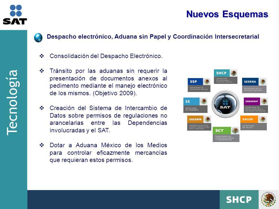 Despacho electrónico, Aduana sin Papel y Coordinación Intersecretarial Consolidación del Despacho Electrónico.