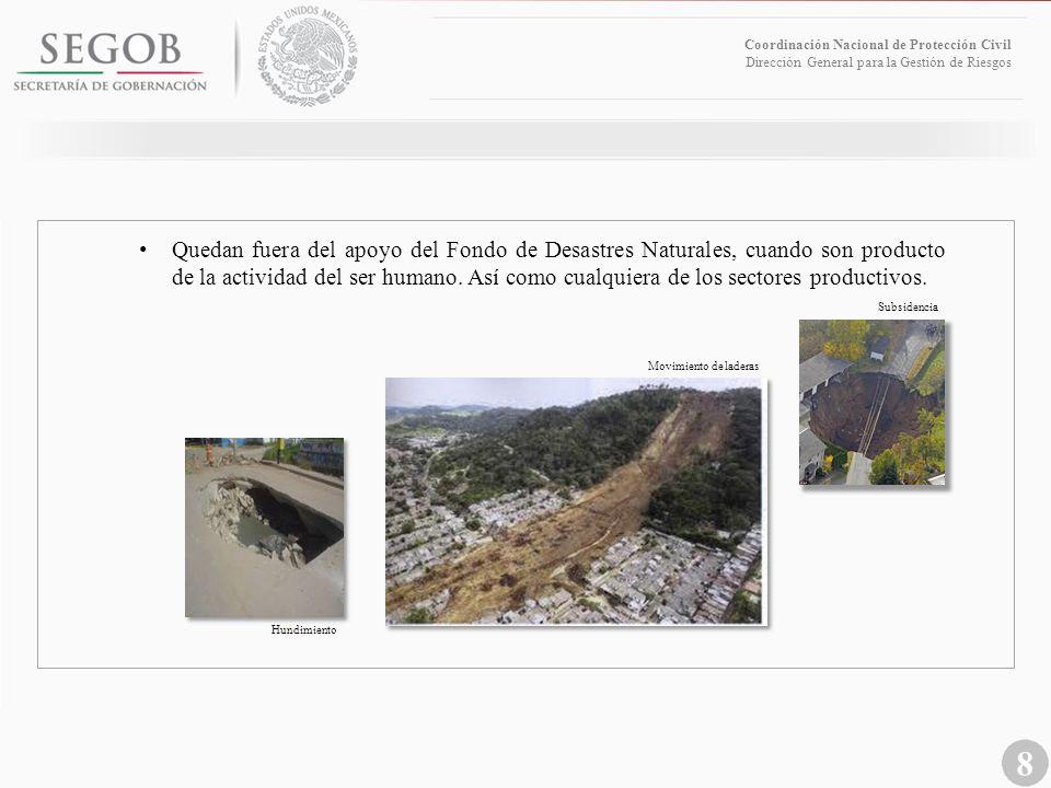 8 Coordinación Nacional de Protección Civil Dirección General para la Gestión de Riesgos Movimiento de laderas Subsidencia Hundimiento Quedan fuera de