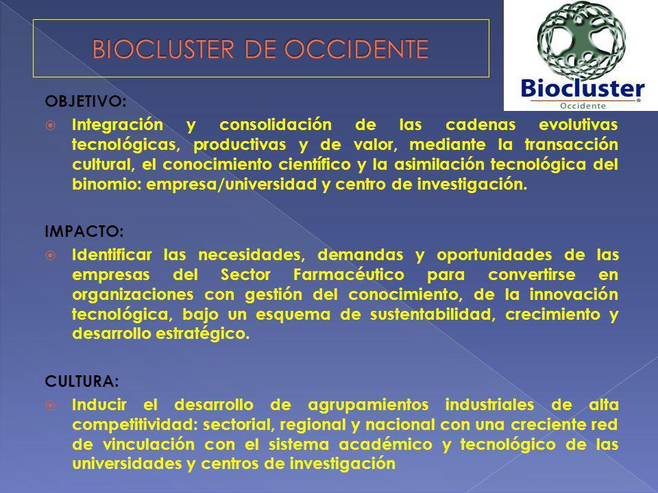OBJETIVO: Integración y consolidación de las cadenas evolutivas tecnológicas, productivas y de valor, mediante la transacción cultural, el conocimient