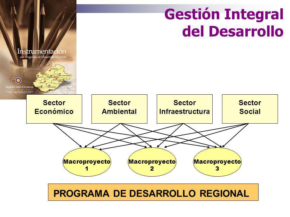 de la Región Centro - Occidente Consolidación del proceso