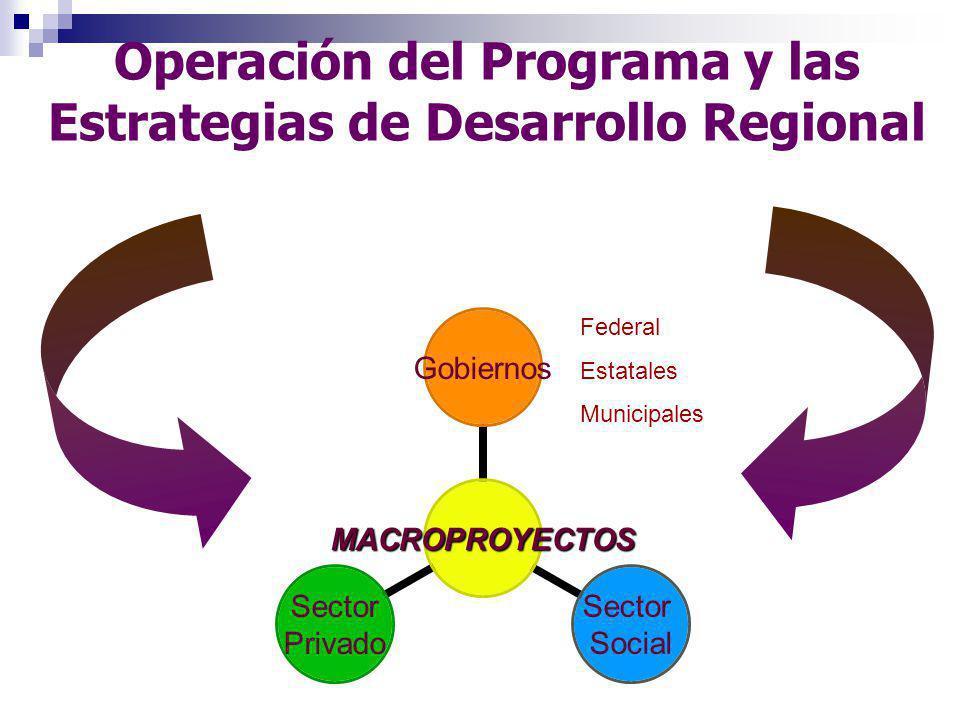 v Acciones realizadas por el SIRCO Acciones realizadas durante 2004 – 2005.
