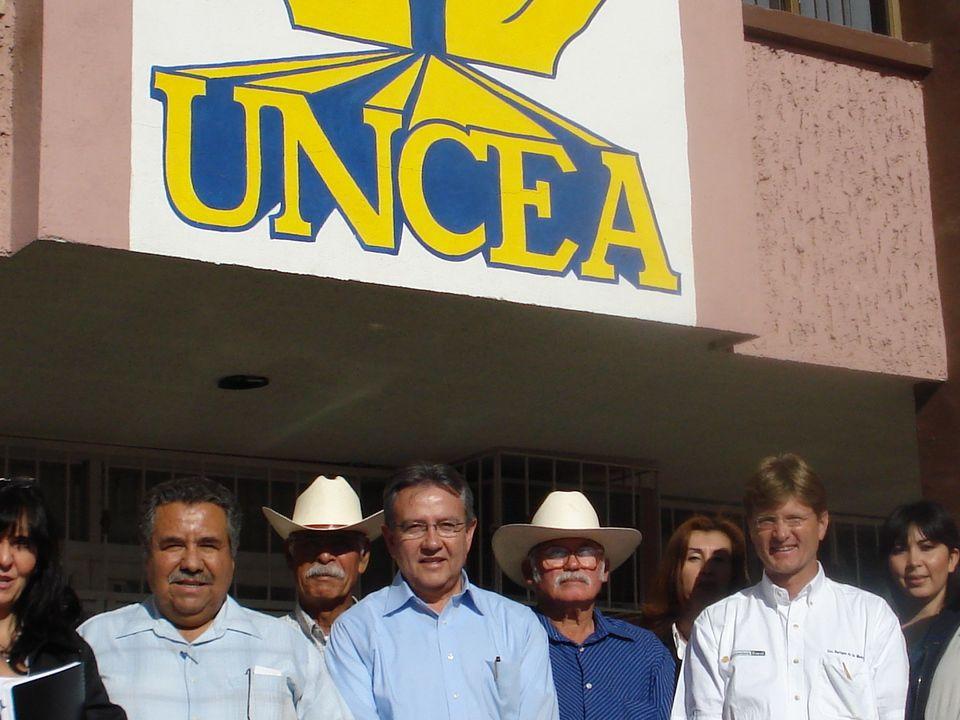 SCAP UNCEA Esta Sociedad esta integrado por socios de los Municipios de Angostura, Guamúchil, Navolato, Mocorito y Guasave, todos del Estado de Sinaloa.