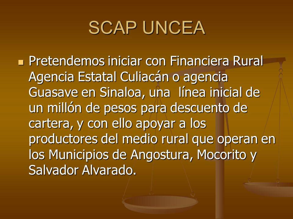 SCAP UNCEA Pretendemos iniciar con Financiera Rural Agencia Estatal Culiacán o agencia Guasave en Sinaloa, una línea inicial de un millón de pesos par