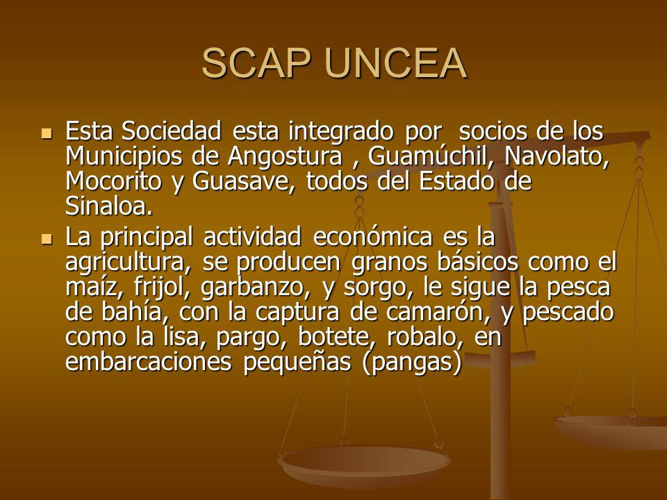 SCAP UNCEA Esta Sociedad esta integrado por socios de los Municipios de Angostura, Guamúchil, Navolato, Mocorito y Guasave, todos del Estado de Sinalo