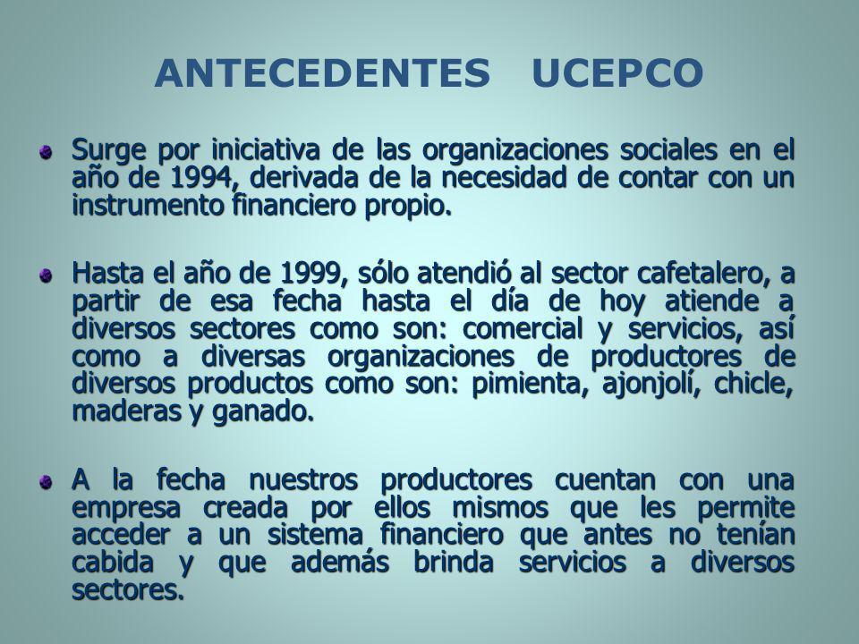 Surge por iniciativa de las organizaciones sociales en el año de 1994, derivada de la necesidad de contar con un instrumento financiero propio. Hasta