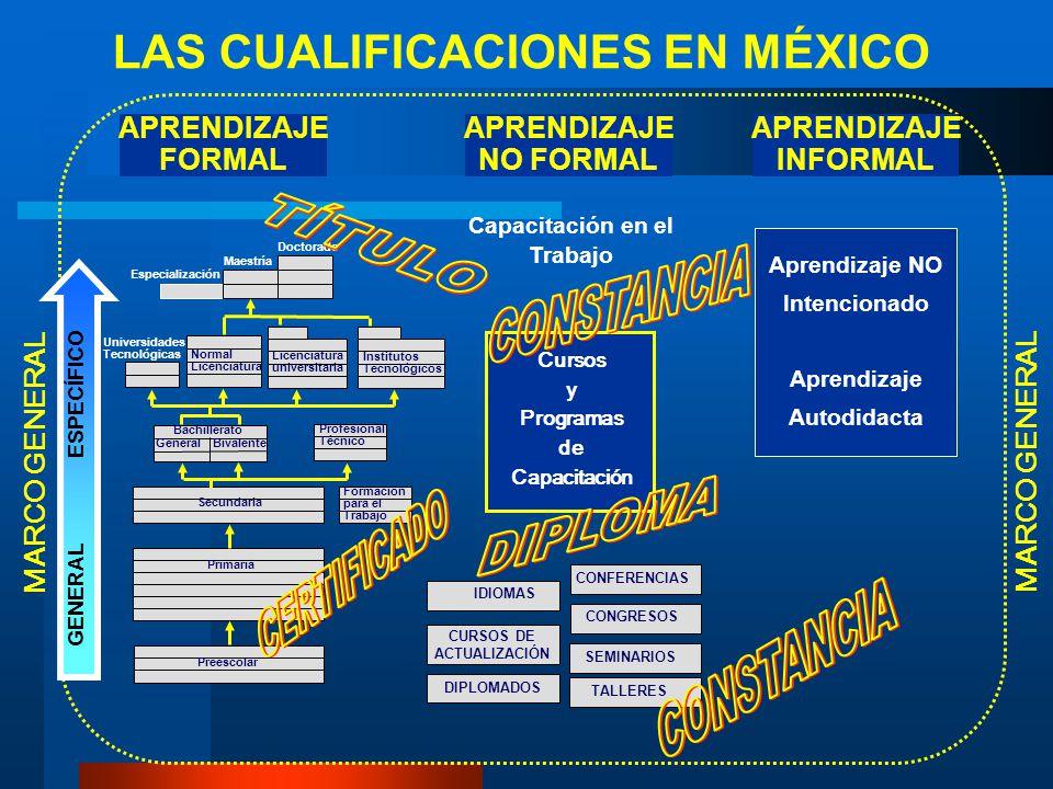 PROFESIONAL LICENCIATURA APRENDIZAJE FORMAL LAS CUALIFICACIONES EN MÉXICO MARCO GENERAL IDIOMAS SEMINARIOS Capacitación en el Trabajo Especialización
