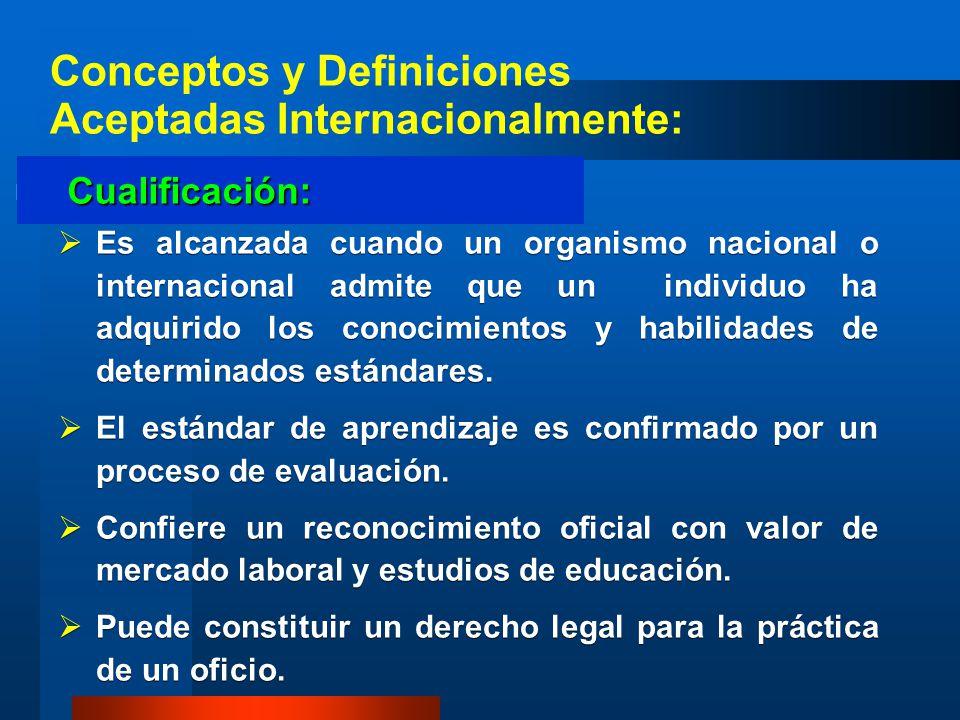 Es alcanzada cuando un organismo nacional o internacional admite que un individuo ha adquirido los conocimientos y habilidades de determinados estánda