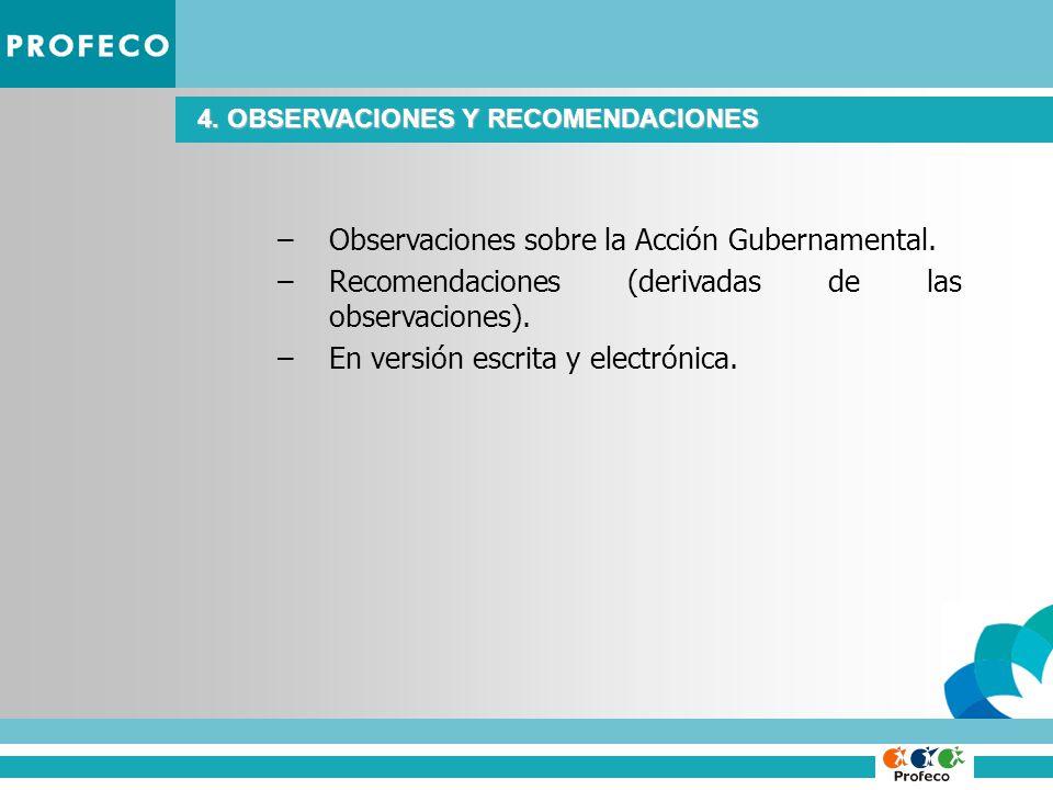 4. OBSERVACIONES Y RECOMENDACIONES –Observaciones sobre la Acción Gubernamental.