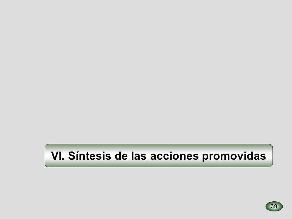 VI. Síntesis de las acciones promovidas 39