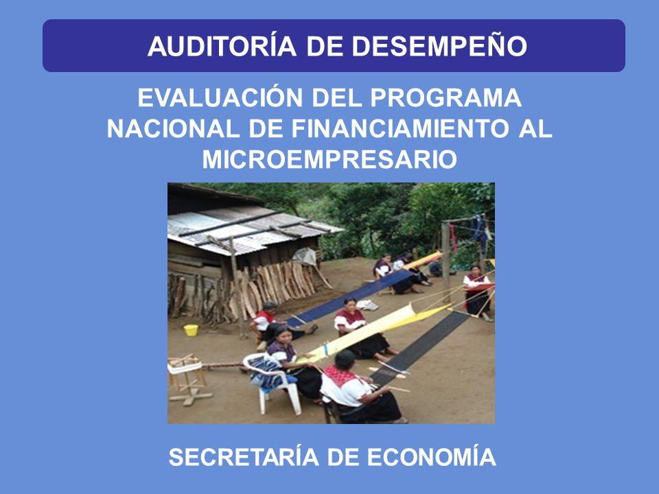 EVALUACIÓN DEL PROGRAMA NACIONAL DE FINANCIAMIENTO AL MICROEMPRESARIO SECRETARÍA DE ECONOMÍA AUDITORÍA DE DESEMPEÑO