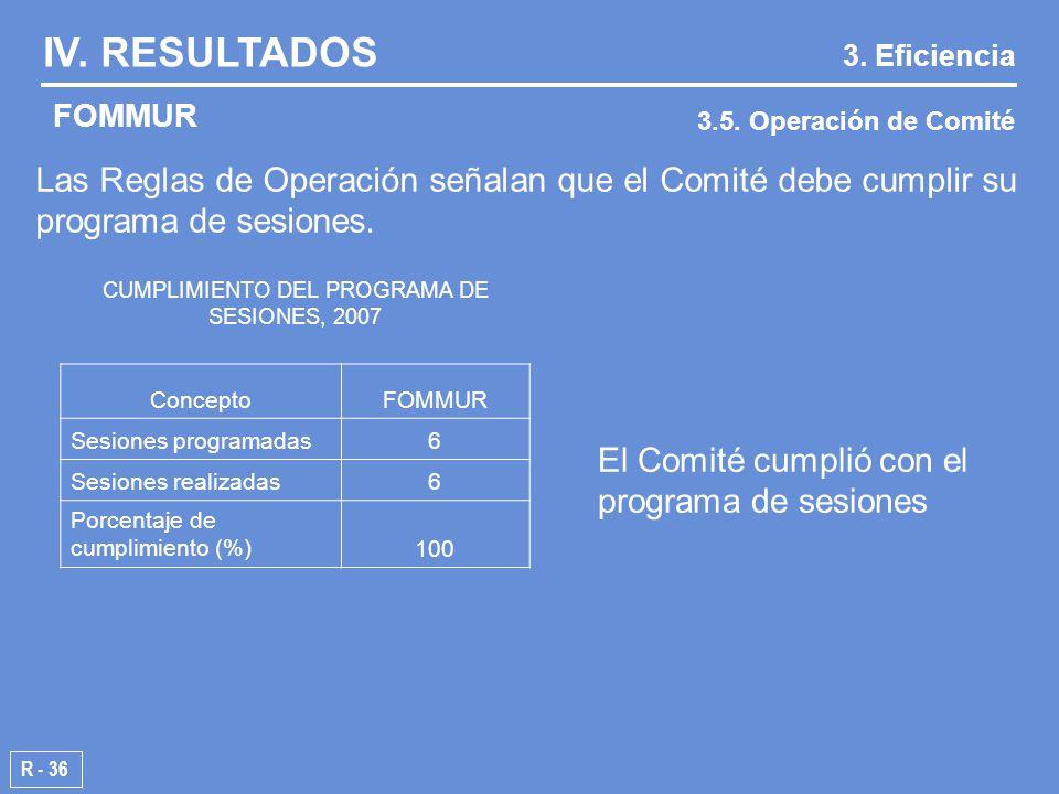 CUMPLIMIENTO DEL PROGRAMA DE SESIONES, 2007 ConceptoFOMMUR Sesiones programadas6 Sesiones realizadas6 Porcentaje de cumplimiento (%)100 IV.