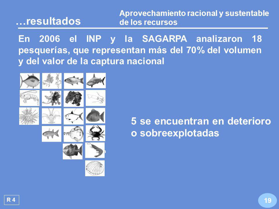 Aprovechamiento racional y sustentable de los recursos R 4 De 2004 a 2006 se redujo en 2.5 puntos porcentuales el índice de sustenta- bilidad de las pesquerías 18 …resultados RO: Aprovechamiento racional y sustentable de los recursos pesqueros y acuícolas