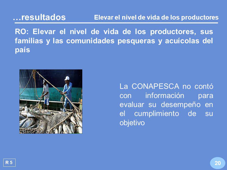 Camarón Aprovechamiento racional y sustentable de los recursos R 4 19 5 se encuentran en deterioro o sobreexplotadas …resultados En 2006 el INP y la SAGARPA analizaron 18 pesquerías, que representan más del 70% del volumen y del valor de la captura nacional Abulón Lisa Erizo Mero