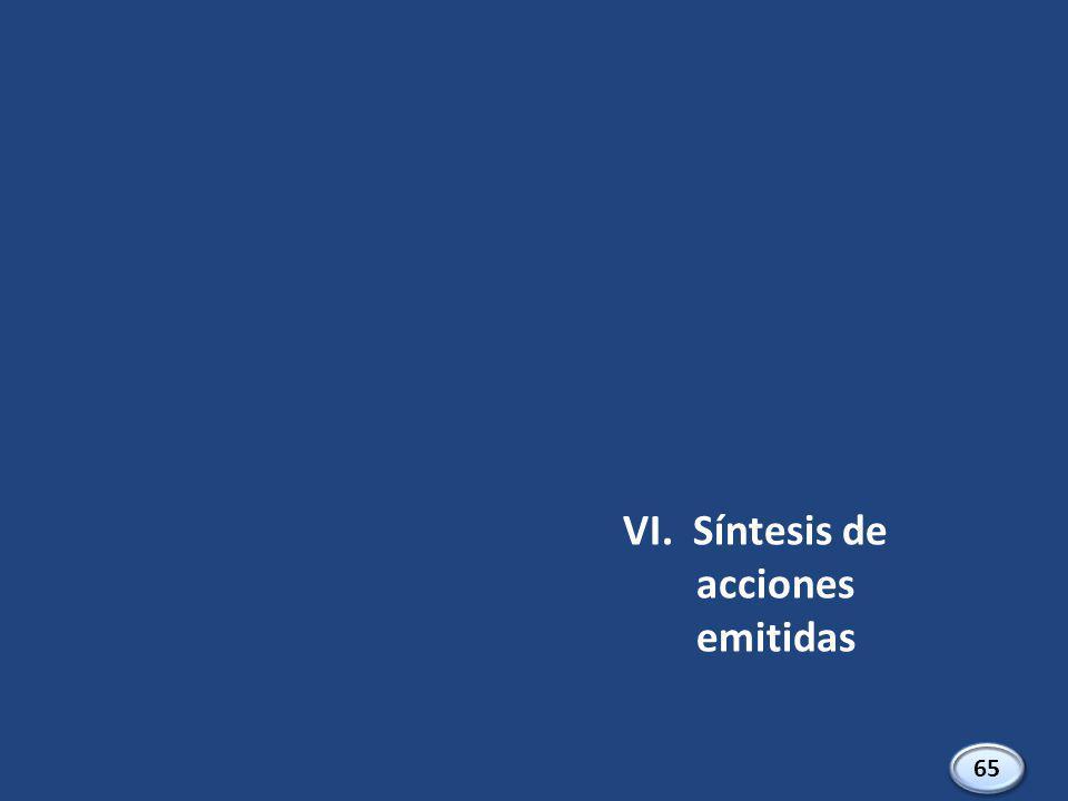 VI. Síntesis de acciones emitidas 65