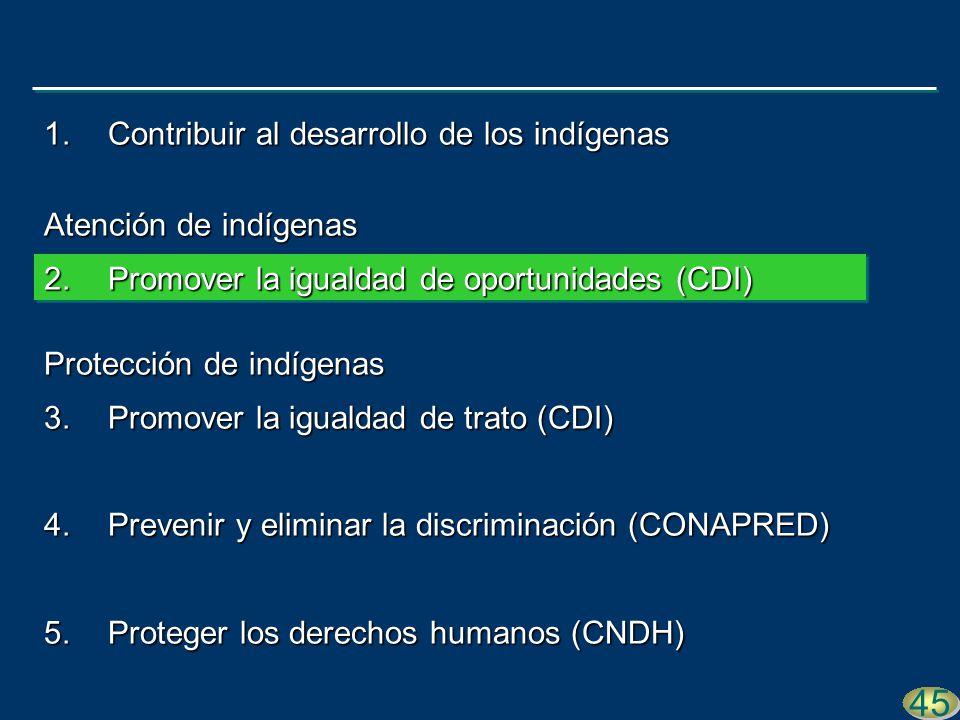 41 45 1.Contribuir al desarrollo de los indígenas Atención de indígenas 2.Promover la igualdad de oportunidades (CDI) Protección de indígenas 3.Promover la igualdad de trato (CDI) 4.Prevenir y eliminar la discriminación (CONAPRED) 5.Proteger los derechos humanos (CNDH)