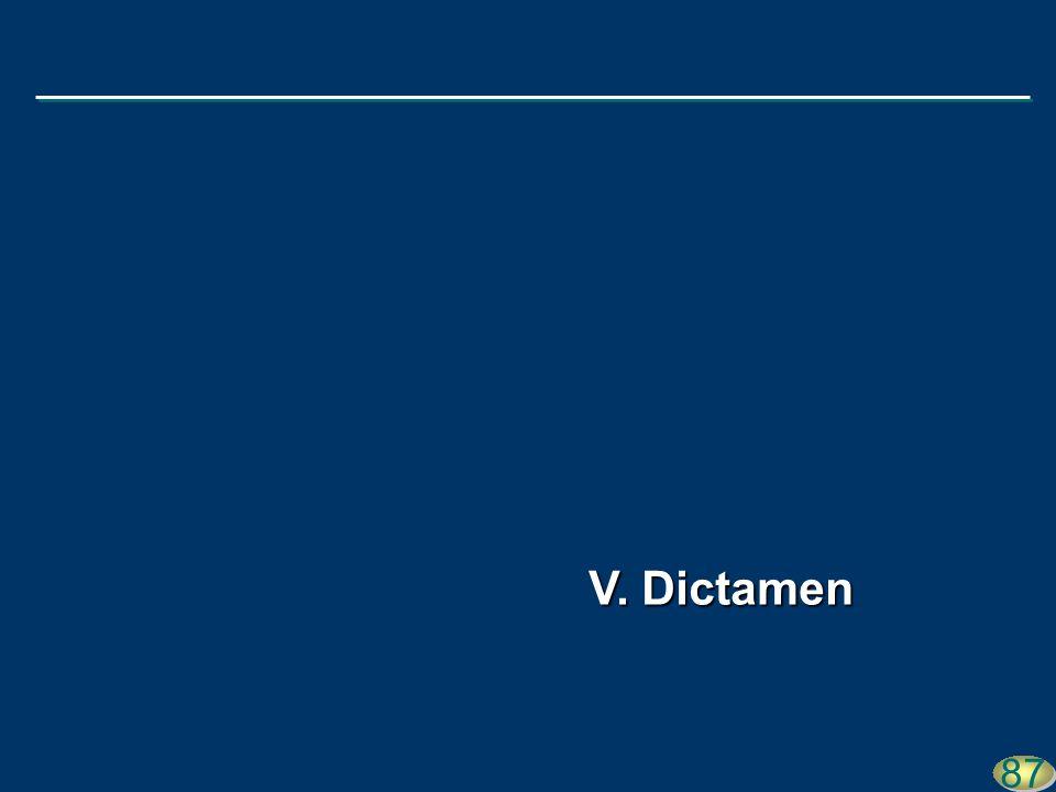 87 V. Dictamen