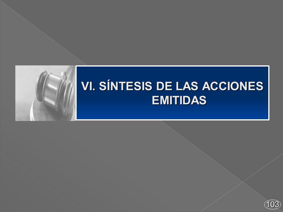 103 VI. SÍNTESIS DE LAS ACCIONES EMITIDAS