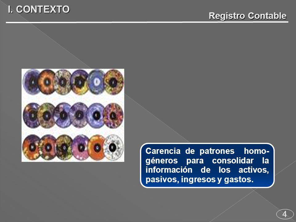 4 Carencia de patrones homo- géneros para consolidar la información de los activos, pasivos, ingresos y gastos.