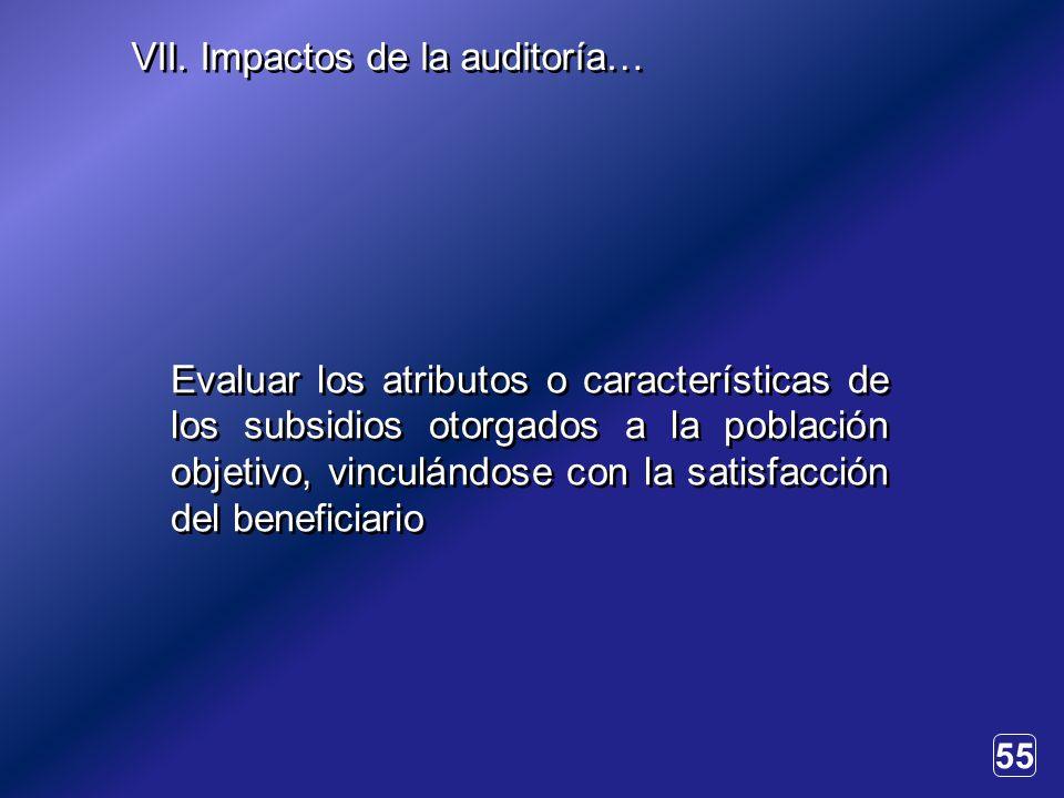 55 Evaluar los atributos o características de los subsidios otorgados a la población objetivo, vinculándose con la satisfacción del beneficiario VII.