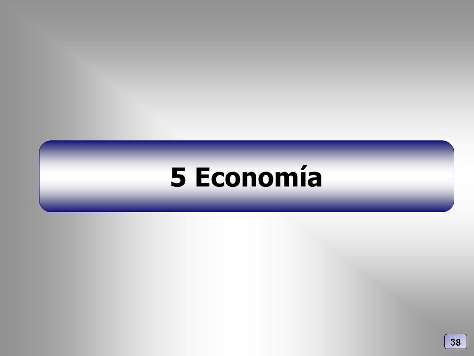 5 Economía 38